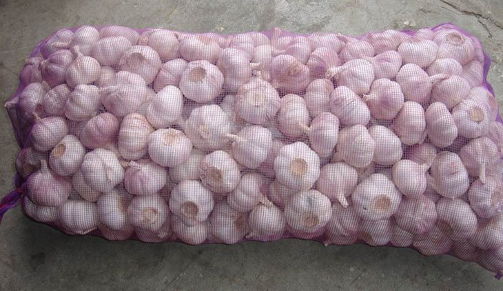 Storing garlic in mesh produce bags