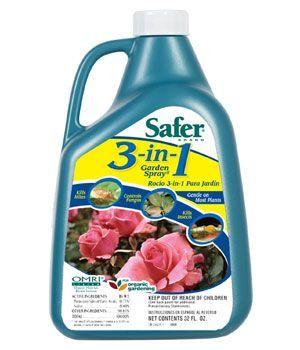 Sulfur Spray for Powdery Mildew