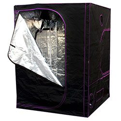The Apollo 5x5 grow tent is the best value for the money.