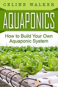 How to Build Your Own Aquaponics System