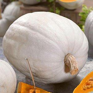 Super Moon Pumpkin